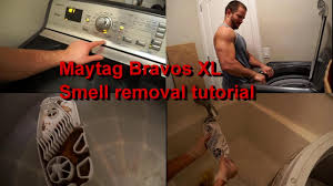 how to get rid of the maytag bravos xl moldy smell step by step