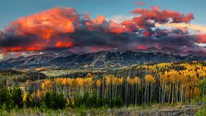 Colorado forest images Colorado parks wildlife state forest jpg