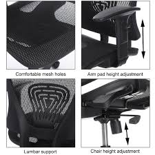 Ergonomic Office Chairs With Lumbar Support Ancheer High Back Black Mesh Swivel Ergonomic Office Desk Chair