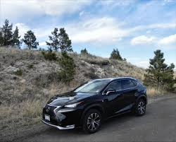 all new lexus nx compact 2015 lexus nx 200t f sport is all new fun and the perfect
