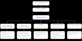 new york life help desk organization chart financial strategies and solutions tina