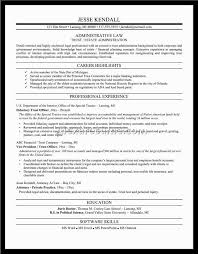 Government Job Resume by Phenomenal Federal Government Resume Example With Federal