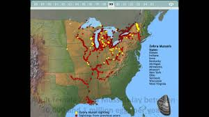 Map Of The United States Great Lakes by Zebra Mussel Invasion In The Great Lakes Youtube
