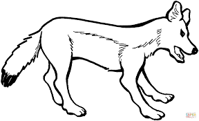 red fox vixen coloring page free printable coloring pages