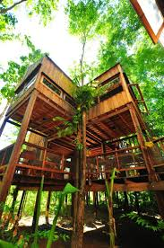 74 best my serenity treehouses images on pinterest architecture