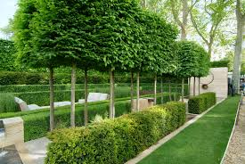 nice landscape hedges 1 privacy hedge landscape design planting