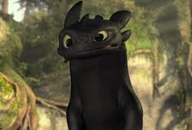 toothless train dragon waz modeled tabby cat