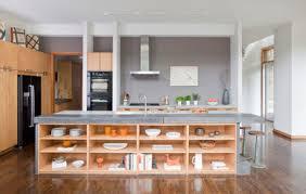 kitchen design dillema