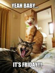 Its Friday Funny Meme - its friday meme happy friday funny images