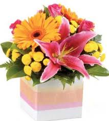 affordable flowers affordable flowers deeragun florist townsville