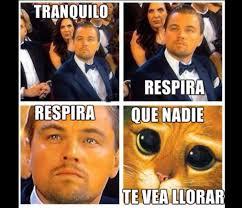 Memes De Leonardo Dicaprio - memes se burlan de la sexta nominación de leonardo dicaprio a los