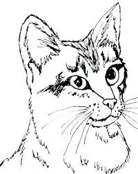 printable coloring pages kittens kitten coloring sheets kitten coloring sheet kitten printable