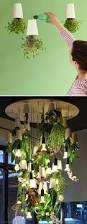 Urban Herb Garden Ideas - 30 amazing diy indoor herbs garden ideas this herb chandelier