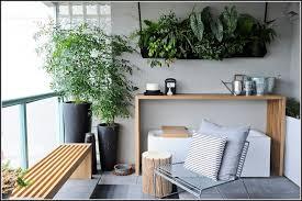 pflanzen f r balkon pflanzen fr den balkon winter balkon house und dekor galerie