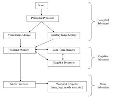 Prospective cohort study   Wikipedia