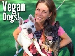 vegan dogs healing on plant based foods dog food recipe