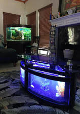 Fish Tank Living Room Table - aquarium coffee table ebay