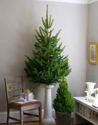 Christmas Tree Decorating Ideas Southern by Christmas Tree Decor That Is Out Of The Reach Of Children I