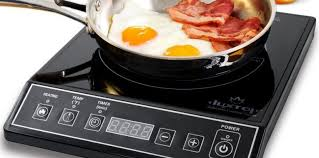 Induction Cooktop Power Make Your Outing Memorable With The Best Portable Induction