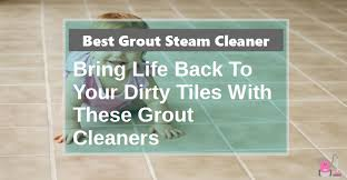 what is the best grout steam cleaner vacuum cleaner buzz