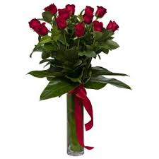 Long Stem Rose Vase 12 Extra Long Stem Red Roses In Vase