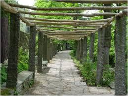 Vine Trellis Ideas Alluring Splendid Grape Trellis Decorating Ideas For Landscape