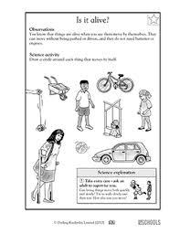 1st grade 2nd grade kindergarten science worksheets is it alive