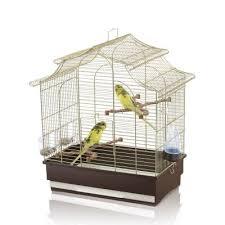 gabbie per canarini imac pagoda export gabbia per canarini pappagallini passeripetshop