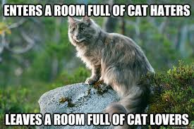 Cat Lover Meme - enters a room full of cat haters leaves a room full of cat lovers