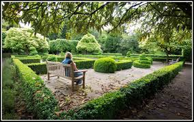 free images watch tree lawn flower seat walkway female