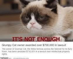 Grumpy Cat Meme Generator - grumpy cat no meme generator alleghany trees