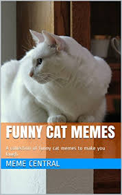 Grumpy Cat Photo 1 Best - com funny cat memes a collection of funny cat memes to make