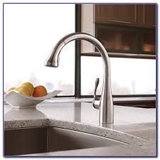 Water Ridge Kitchen Faucet by Costco Kitchen Faucet Water Ridge Kitchen Set Home Decorating