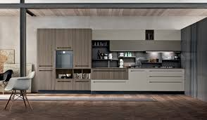 Contemporary Kitchen Contemporary Kitchen Elm Ash Matte Mood Stosa Cucine