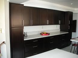 espresso kitchen cabinets with white quartz countertops kitchen cabinets international espresso cabinets
