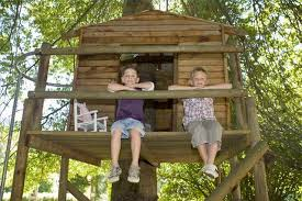 building your own tree house how to build a house how to build a tree house hunker