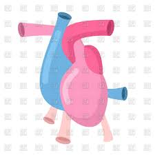Pink Flat Color Set Of Human Internal Organs Icons Flat Color Design Vector Image
