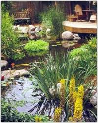 Backyard Ponds And Fountains Small Yard Pond Ideas Creating A Private Haven Fine Gardening