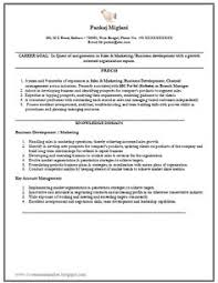Marketing Resume Example by Marketing Resume Business Pinterest Marketing Resume And