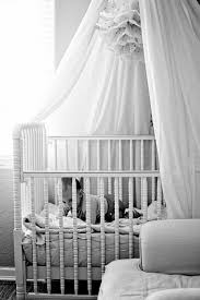 Crib Net Canopy by Newborn Essentials A Natural Mama U0027s Must Haves For The First 2