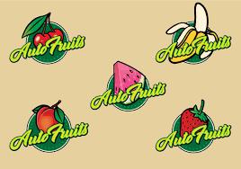 autos designen auto fruits brand design logo design