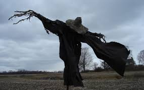 hay man the curious life and times of scarecrows modern farmer