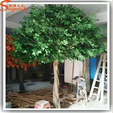 Exotic Fake Decorative Trees Terrific Artificial Plants For Living