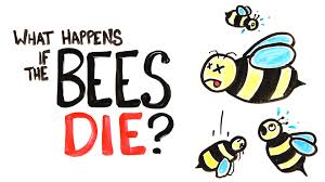 what happens if all the bees die youtube
