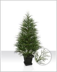 potted christmas tree hemlock pine potted christmas tree christmas tree market