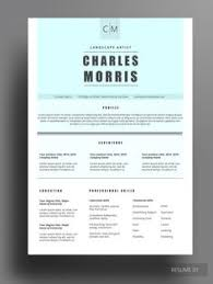 winning resume templates hayrun resume do you the blue color then this resume