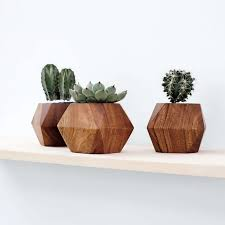 modern succulent planters handcrafted in uganda u2013 the citizenry