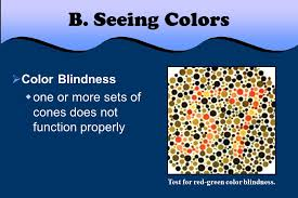 Red Blue Color Blindness Ch Light Ii Light And Color P Light And Matter Seeing