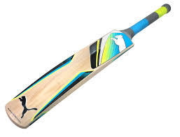get top 10 best cricket bats in different sizes quality materials