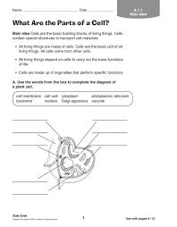 grade 5 book study guide pdf flipbook